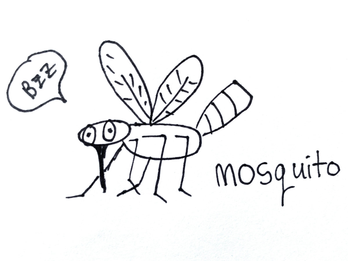 Detail view of drawing a mosquito activity.